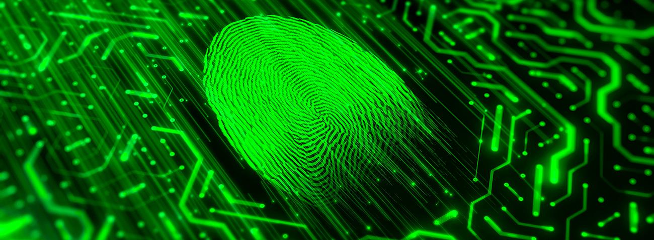 Cyber-Versicherung schützt sie 365 Tage im Jahr